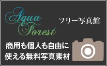 無料写真館 | AquaForest-アクアフォレスト-